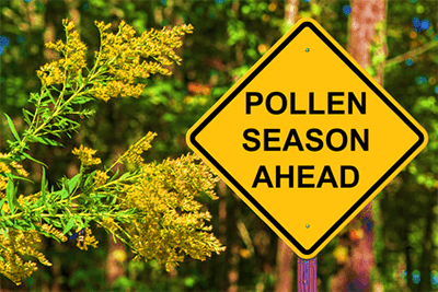Is Chiropractic a Powerful Tool to Combat Allergies and Pollen?